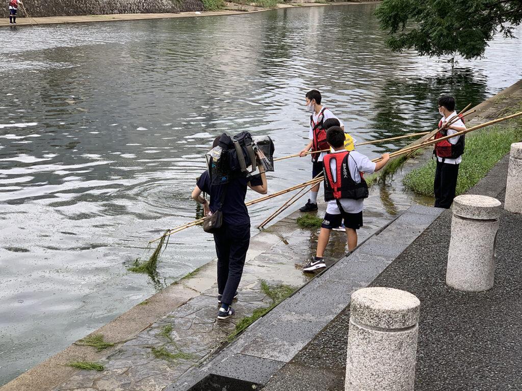 中学1年生天神川水草刈り